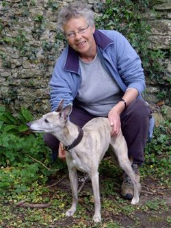 Photo for Dash out with her owner around Abbotsbury.